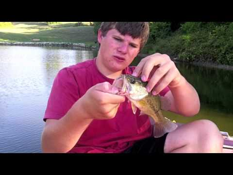 Fishing For Late Summer Bass With Lipless Crank Baits