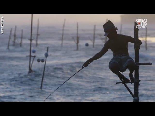 أغرب طريقة لصيد السمك في سريلانكا