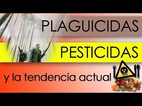 PLAGUICIDAS, PESTICIDAS Y LA TENDENCIA ACTUAL