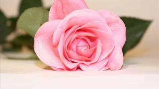 تحميل و مشاهدة Fares Karam To2bor Albi / فارس كرم- تقبر قلبي MP3