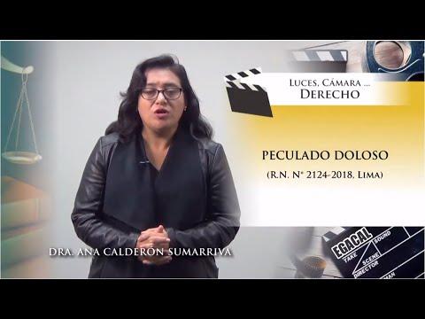 PECULADO DOLOSO (R.N. N° 2124-2018, Lima) Luces Cámara Derecho 142