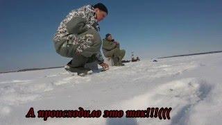 Ловля плотвы зимой на рыбинском водохранилище