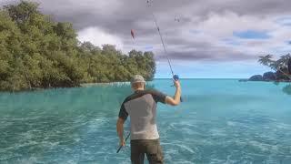 VideoImage1 PRO FISHING SIMULATOR