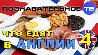 Что едят в Англии 4 (Познавательное ТВ, Василий Колокольцов)