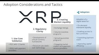Ripple Adoption Considerations And Pre-Allocation Of XRP