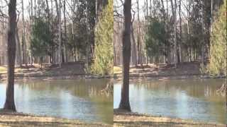 preview picture of video '3D_2012_Schlosspark Laxenburg'