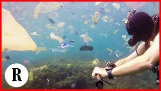 Bali, Nuotare In Un Mare Di Plastica: La Denuncia Del Sommozzatore