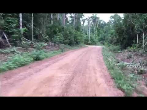 Passeio em Aripuanã - MT