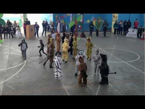 Baile de Madagascar
