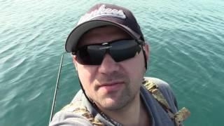 Как на что ловить черноморскую ставриду