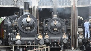preview picture of video 'Dampf am Eisenbahnfest Bahnpark Brugg 2013-Zug,trainfart,train'