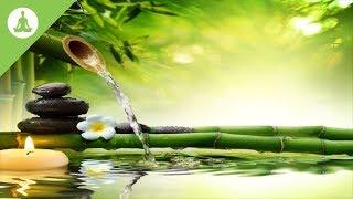 Clean Energy Positive Vibration, Meditation Music, Nature Sound.