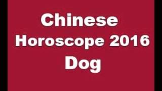 Chinese Horoscope 2016 Dog