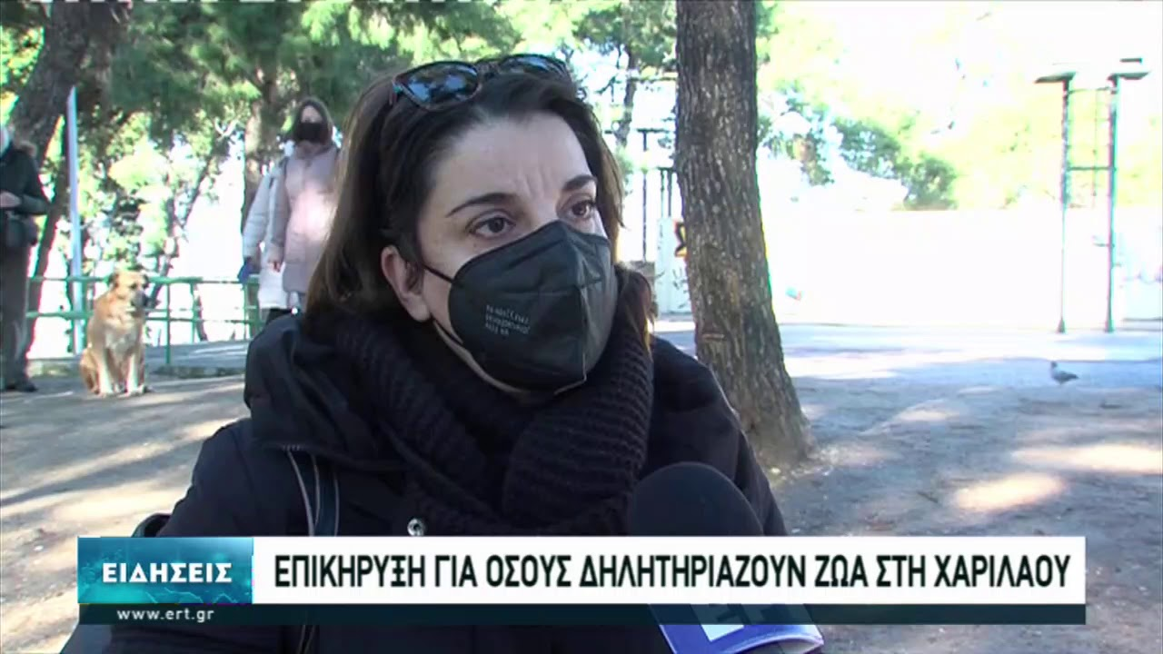 Θεσσαλονίκη: Επικήρυξη για όσους δηλητηριάζουν ζώα | 19/01/2021 | ΕΡΤ