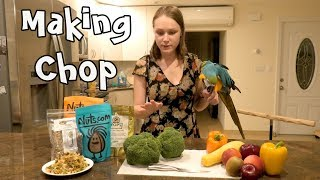Rachel Blue and Gold Macaw Helps Make Chop for Parrots
