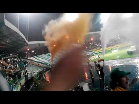 """""""DEPORTES QUINDIO VS POPAYAN"""" Barra: Artillería Verde Sur • Club: Deportes Quindío"""