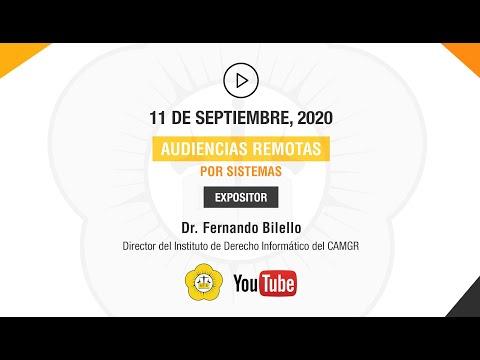 AUDIENCIAS REMOTAS POR SISTEMAS - 11 de Septiembre 2020