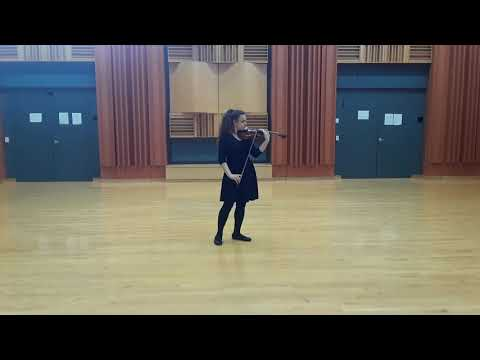 Here is an example of one of my violin performances. In this video, I play the first movement of Lalo's Symphonie Espagnole.