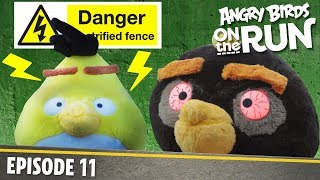 Angry Birds On The Run | Zapped Chuck   S1 Ep11