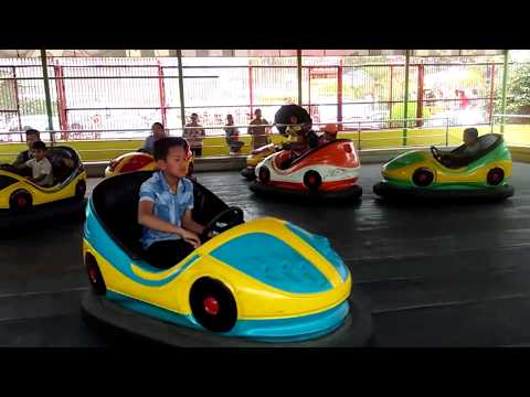 Bumper Cars riding Exciting Videos on Amusement Park! Kids Playtime !!