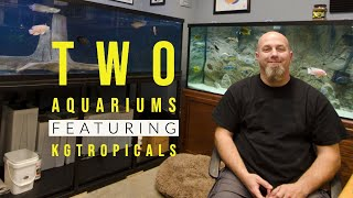 Johns TWO Custom Aquariums Displays