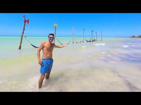 Holbox Tour 2018 ¿que incluye? ¿cuanto cuesta? desde Cancun o Playa del Carmen @sebitastrip