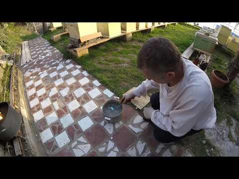 Жидкая подкормка с тимолом, приготовление  04.04.2019 г.