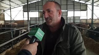 Ferma për mbarështimin e viçave për mish - Fshati Ribar i vogël, komuna e Lipjanit.