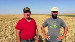 Интервью с фермером в Саскачеване #2 (на английском языке). Канада глазами украинца.