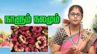 கொடுக்கபுளி : சத்துக்கள் மற்றும் பலன்கள் | Kodukapuli Health Benefits | Naalum Nalamum 07/11/19