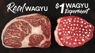 The $1 WAGYU STEAK Experiment | Guga Foods