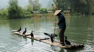 preview picture of video 'Paysages de Chine Croisière sur la rivière Li de Guilin a Yangshuo'