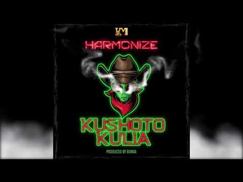 Harmonize – Kushoto Kulia (Official Audio)
