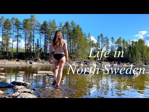 , title : 'Growing Food in North Sweden° Living in Nature VLOG 11 ° HOW to make BIRCH HERBAL MEDICINE°Herbalist