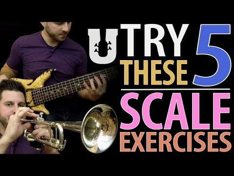 Try These 5 Scale Exercises for Bass - Online Bass Lessons