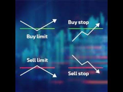 Ref wayne prekybos strategija