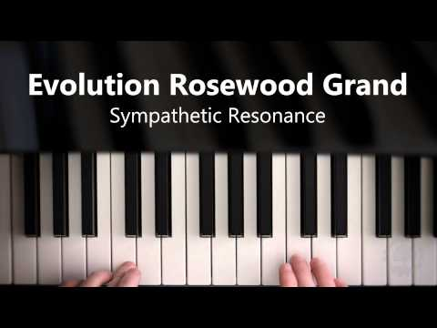 Video for Evolution Rosewood Grand - Sympathetic Resonance