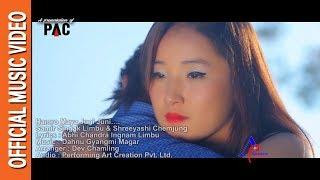 हाम्रो माया जुनि जुनिलाई    HAMRO MAYA JUNI JUNI LAI    New Nepali official music mp3 2016 full High Quality Mp3