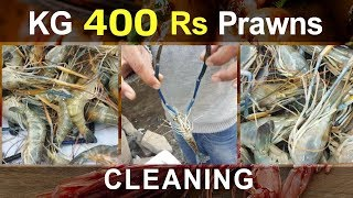 How To Clean Street Prawns | Indian River Prawns Cleaning | Indian Street Food