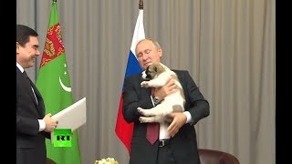 RAW: Turkmen leader presents Putin with Asian shepherd puppy