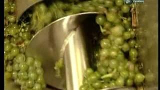 Dokumentárny film: Ako sa to robí - Víno
