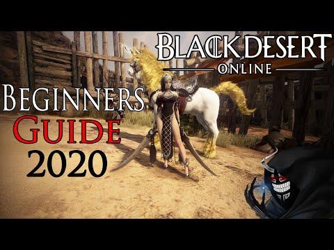 Black Desert Online - Beginner Guide 2020