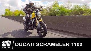 Ducati Scrambler 1100 ESSAI POV Auto-Moto.com