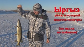 Рыбалка на реке иргиз казахстан