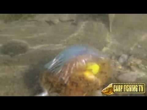 Le basi per pescare in Komi