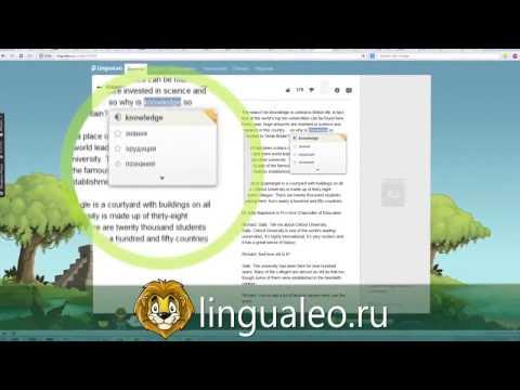 Видеообзор LinguaLeo