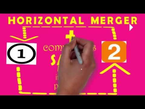 Different of types of MERGER along with examples (+)  i.e. Addition