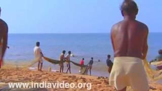 Fishermen in a joint effort at Shankhumugham