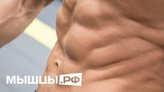 Смотреть онлайн Как правильно качать мышцы пресса мужчинам в зале