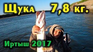 Рыбалка в омской области знаменский район